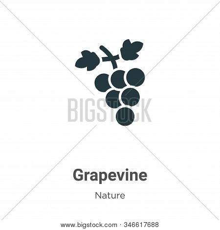 Grapevine Glyph Icon Vector On White Background. Flat Vector Grapevine Icon Symbol Sign From Modern