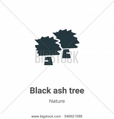 Black Ash Tree Glyph Icon Vector On White Background. Flat Vector Black Ash Tree Icon Symbol Sign Fr