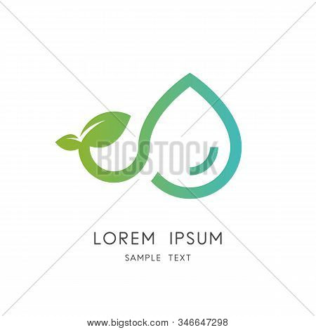 Green Plant Logo - Sprout With Leaves And Drop Of Water Symbol. Nature, Ecology And Environment, Agr