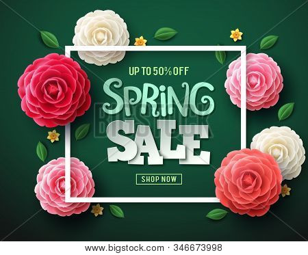 Spring Sale Vector Banner Design. Spring Sale Text With Colorful Camellia Flowers, Leaves And Frame