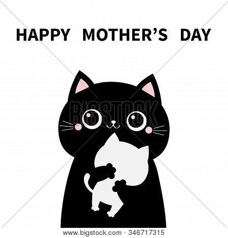 Cat Holding Hugging Little Baby Kitten. Happy Mothers Day. Kittens On Hands. Kitty Hug. Funny Kawaii