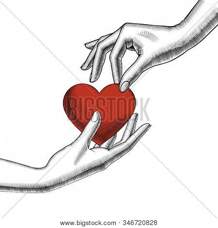 Female hands holding on the palm a red heart. Retro style valentine greeting card design. Vintage engraving stylized drawing.