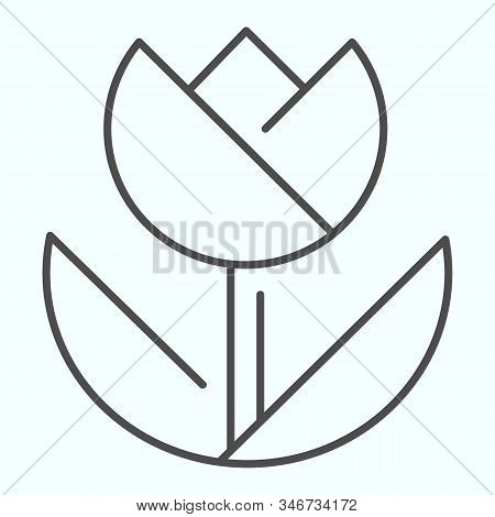 Macro Thin Line Icon. Macro Photography Vector Illustration Isolated On White. Flower In Macro Outli