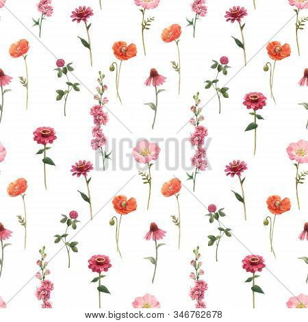 Beautiful Vector Floral Summer Seamless Pattern With Watercolor Hand Drawn Field Wild Flowers. Stock