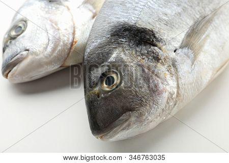 Fresh Dorado Fishes On White Background, Close Up