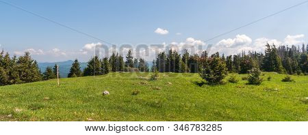 Tlsta Hill Summit In Velka Fatra Mountains In Slovakia Covered By Meadow With Trees During Beautiful