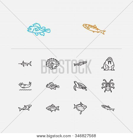 Seafood Icons Set. Herring And Seafood Icons With Fin, Moon Fish And Seafood. Set Of Beach For Web A
