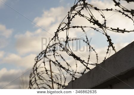 Barbed Wire On The Fence