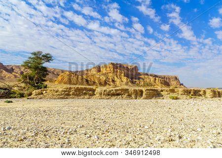 Landscape Along Nahal Paran Valley, The Negev Desert, Southern Israel