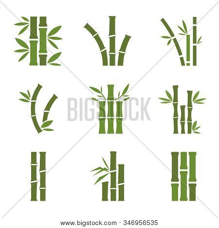 Bamboo Stalks And Leaves Vector Icons. Stick Bamboo With Foliage, Curve Frame Bamboo Illustration.