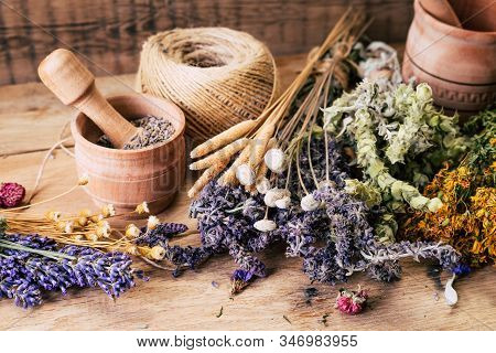 Harvesting Medicinal Herbs, Alternative Medicine, Ayurveda, Dried Flowers
