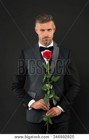 Man Dressed Up In Tuxedo With Rose. Groom With Tie And Red Rose. Her Elegant Valentine. Man Tuxedo H
