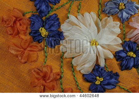Chicory And Chrysanthemum