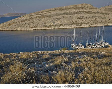Sailboats In Morning Light