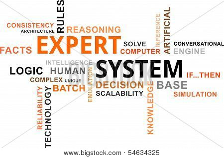 Word Cloud - Expert System