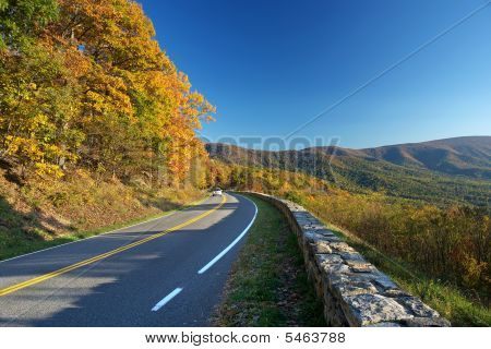 Road in Shenandoah National park at the autumn poster