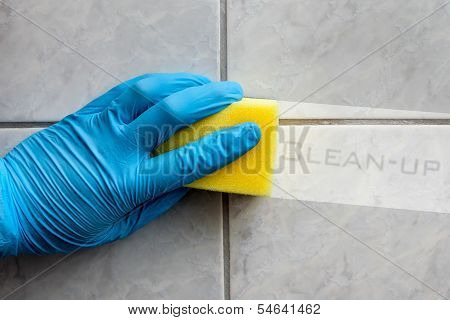 Sponge Cleaning Bathroom