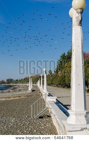Embankment in Sukhumi