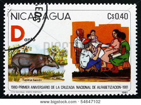Postage Stamp Nicaragua 1975 Fight Against Illiteracy