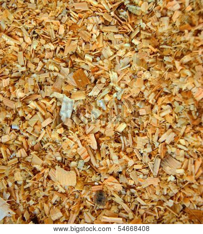 Sawdust on the ground.Background from wooden sawdust poster