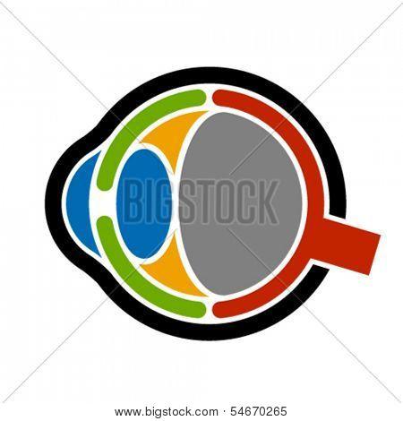 vector anatomy human eye icon
