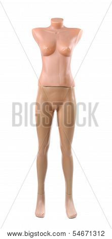 fashion mannequin isolated