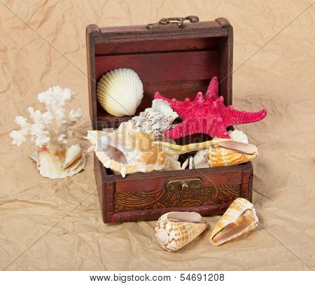Sea shells, cockleshells, starfishes in a chest on old paper poster