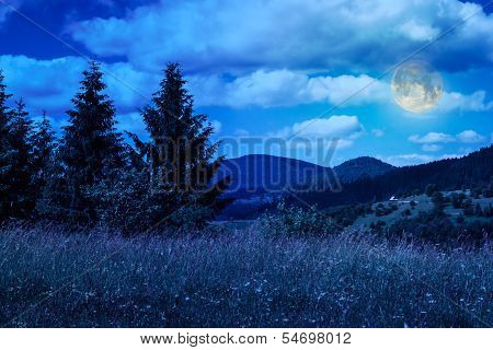 Meadow With In The Mountains