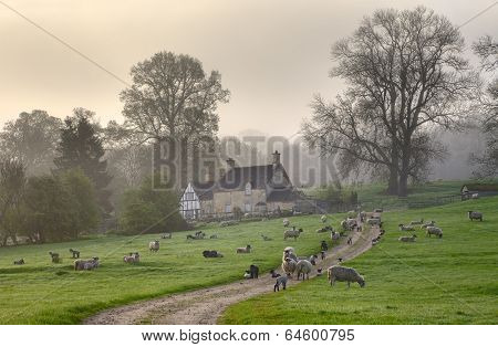 Gloucestershire Morning