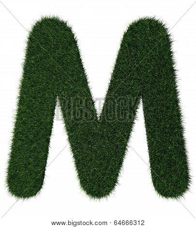 Grass alphabet-M