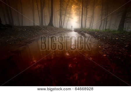 Bloody river in a dark forest with man and fog
