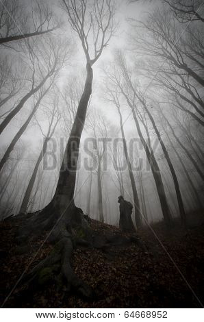 Dark man silhouette standind near huge tree in forest with fog