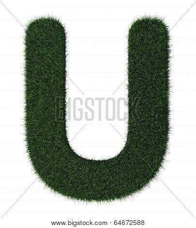 Grass alphabet-U