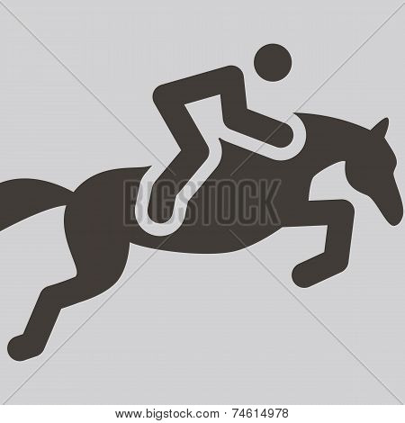 Summer sports icon set - equestrian icon poster