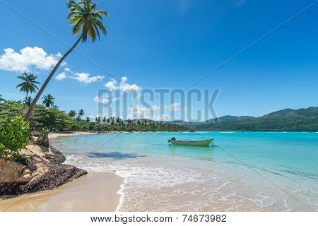 Boat on turquoise Caribbean sea Playa Rincon Dominican Republic vacation holidays palm trees beach