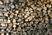firewood in the Bulgarian village in the mountains in autumn poster