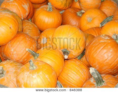 pumpkins_filtered