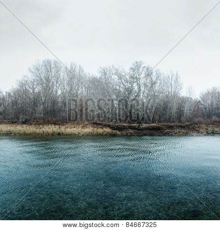 River And Trees Without Leaves