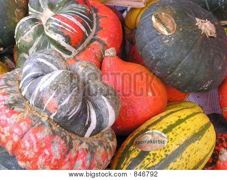 Vegetables celebration