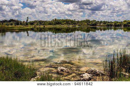 Florida Everglades Lake