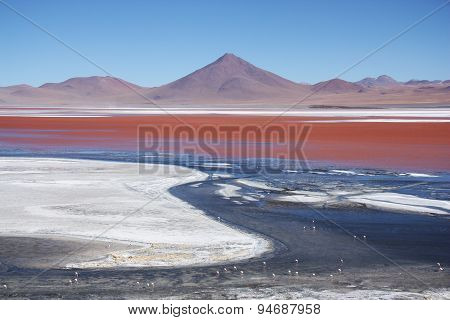 Laguna Colorada with flamingos and volcano in Bolivia