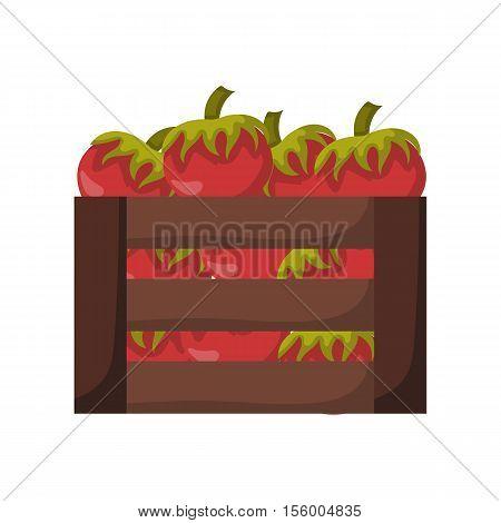 Vector Cartoon Isolated Red Tomatos Box