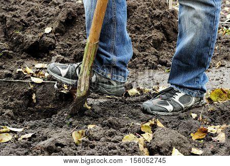 Man Digging Soil With Garden Shovel