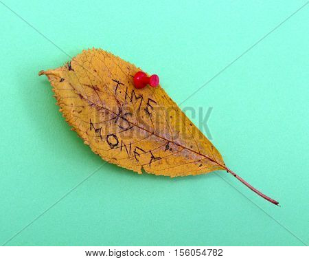 picture of a autumn walnut leaves with handwritten text time is money