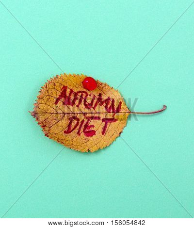 picture of a autumn walnut leaves with handwritten text autumn diet