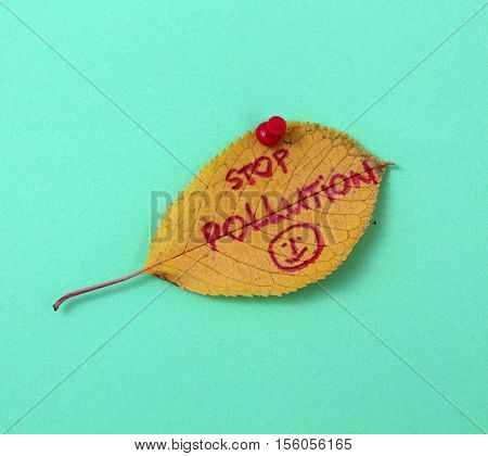 picture of a autumn walnut leaves with handwritten text stop pollution