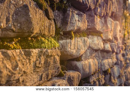 Old rock wall. Wild grasses growing out of crevices and cracks over old rock wall. Ancient walls of castle