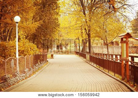 Alley in beautiful zoological garden on autumn day
