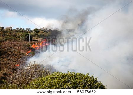 Grass fire in a hot summer caused by vandalism burning in a field in Wales, UK