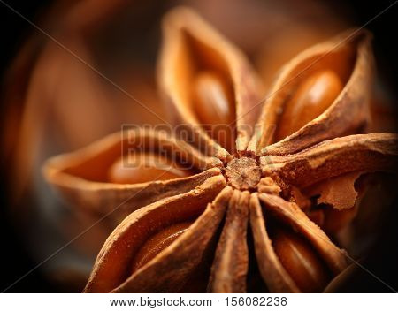 Anise star seeds on the wooden background. Aromatic ingredient in culinary, raw for alcohol drink arak, ouzo, raki, sambuca. Macro, close-up. Toned image.